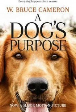 A Dog's Purpose EN
